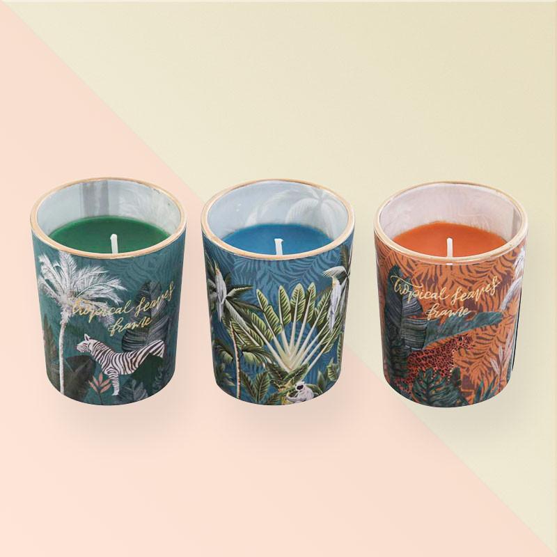 Juego de 3 velas decorativas en vasos de cristal Tropical Leaves